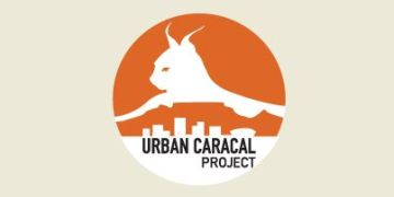 The Urban Caracal Project