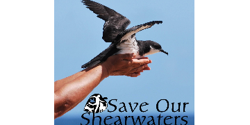 Save Our Shearwaters - Kauai Humane Society logo